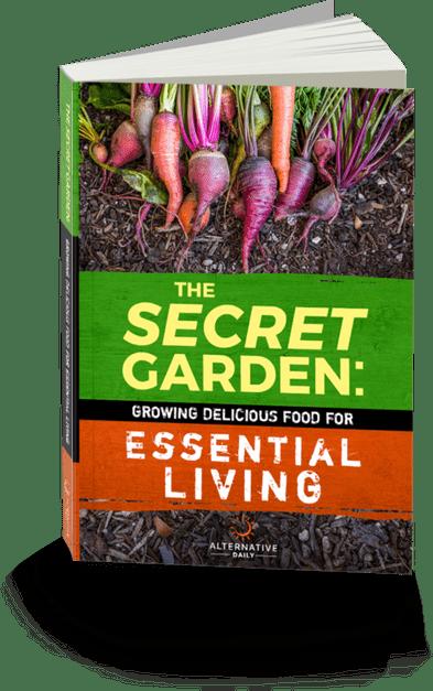 The Secret Garden Review