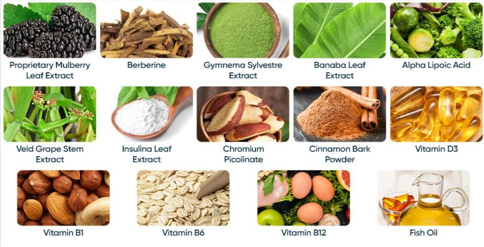 Glucocil Ingredients
